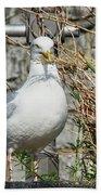 Nest Building Time Bath Towel