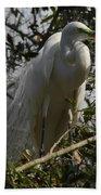 Nesting Egret Bath Towel
