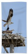 Nesting Osprey In New England Bath Towel
