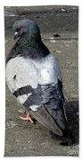 New York City Pigeons # Bath Towel