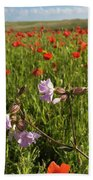 Night Flowering Catchfly And Poppies Bath Towel