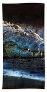 Nile Crocodile On Riverbank-1 Bath Towel