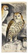 Nocturnal Scene With Three Owls Bath Towel