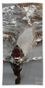 Noisy Sea Lion Bath Towel