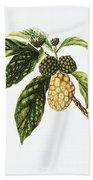Noni Fruit Art Bath Towel