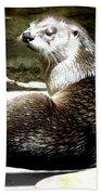 North American River Otter Bath Towel