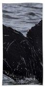 North Atlantic Humpback Bath Towel
