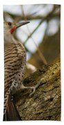 Northern Flicker Woodpecker 1 Bath Towel