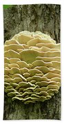 Northern Tooth Fungus Bath Towel