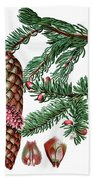 Norway Spruce, Pinus Abies Bath Towel