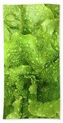 Nourish In Green Bath Towel