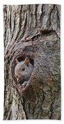 Nutty Squirrel Surprise  Bath Towel