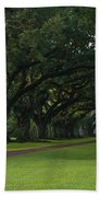 Oak Alley Plantation In The Summer Time Bath Towel by Chris Coffee