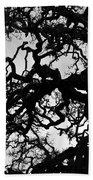 Oak Tree In Winter Detail - Amador County, California Bath Towel