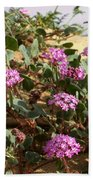 Ocotilla Wells Pink Flowers 2 Bath Towel