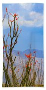 Ocotillo Cactus With Mountains And Sky Bath Towel