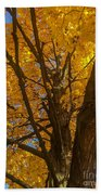 October Day Hand Towel