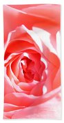 October Rose Close Up Bath Towel