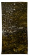 Of Fishes And Rainbows - Wild Salmon Run In The Creek Bath Towel