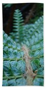 Office Art Forest Ferns Green Fern Giclee Prints Baslee Troutman Bath Towel