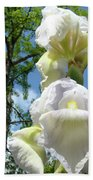 Office Art Giclee Prints White Yellow Iris Flowers Irises Baslee Troutman Bath Towel