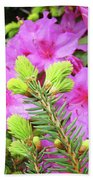 Office Art Pine Conifer Pink Azalea Flowers 38 Azaleas Giclee Art Prints Baslee Troutman Bath Towel