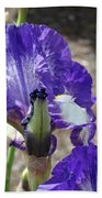 Office Art Prints Irises Flowers 46 Iris Flower Giclee Prints Baslee Troutman Bath Towel