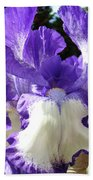 Office Art Prints Irises Purple White Iris Flowers 39 Giclee Prints Baslee Troutman Bath Towel