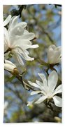 Office Art Prints Magnolia Tree Flowers Landscape 15 Giclee Prints Baslee Troutman Bath Towel