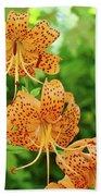 Office Art Prints Tiger Lilies Flowers Nature Giclee Prints Baslee Troutman Bath Towel