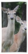 Oh Deer Bath Towel
