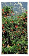 Okanagan Valley Apples Bath Towel