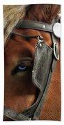 Old Blue Eyes Savannah Bath Sheet