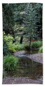 Old Mill Park In Mill Valley 2 Bath Towel
