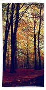 Old Tree Silhouette In Fall Woods Bath Towel