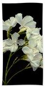 Oleander Hand Towel