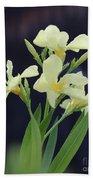 Oleander Marie Gambetta 2 Bath Towel