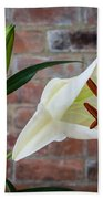 Opening White Lily Bath Towel