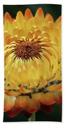 Orange And Yellow Strawflower Bath Towel