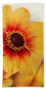 Orange Dahlia  Hand Towel