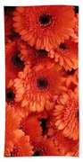 Orange Daisies Bath Towel
