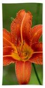 Orange Day Lily No.2 Bath Towel