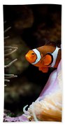 Orange Fish In Sea Anemones Bath Towel