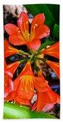 Orange Trumpet Flowers At Pilgrim Place In Claremont-california Bath Towel
