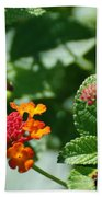 Orange  Red Flowers Bath Towel