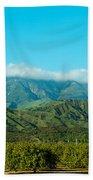 Orange Tree Grove, Santa Paula, Ventura Bath Towel