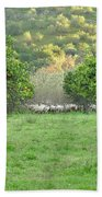 Orange Trees And Sheep Flock Bath Towel