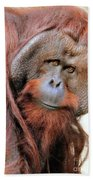 Orangutan Male Closeup Bath Towel