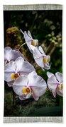 Orchid 1 Triptych Bath Towel