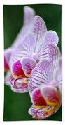 Orchid 30 Bath Towel